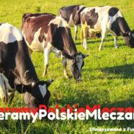 Wybierając polski nabiał, wspierasz naszych rolników i gospodarkę